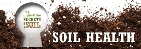Unlock Soil